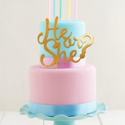 He or She Gender Reveal Acrylic Cake Topper